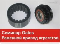 Gates, zobsiksna